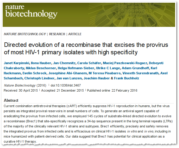 Directed evolution of a recombinase that excises the provirus of most HIV-1 primary isolates with high specificity